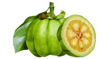 apple cider vinegar garcinia cambogia study